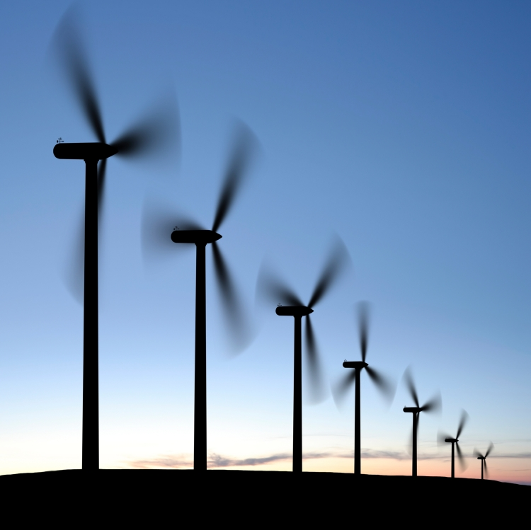 wind turbines in silhouette at twilight, square frame