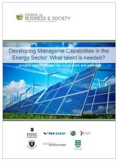 Managerial capabilities in the energy sector