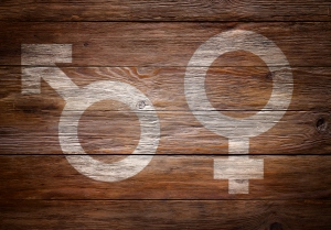 Genders symbols stenciled on wood