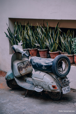 Vespa and Italian social enterprise at the Council on Business & Society